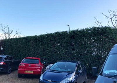 Highfield-Gardening-Hedge-After1